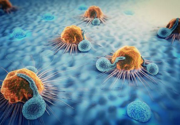 Miễn dịch học cơ bản
